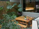 20060218-泰一庭院.JPG
